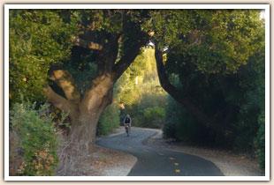 Bob Jones Bike Trail In Avila Beach City To The Sea Trail