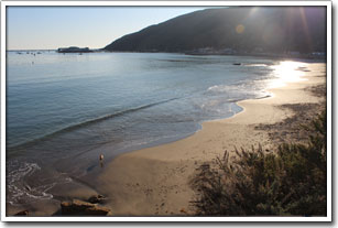Picture of Dog Beach in Port San Luis