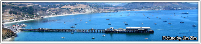 Harbor of Port San Luis