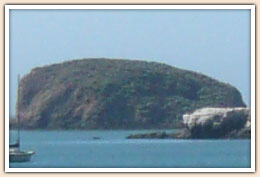 Whalers Island in Port San Luis Harbor